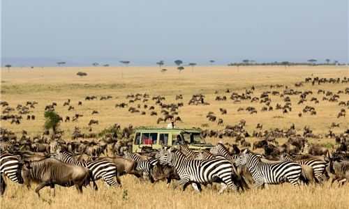 Serengeti-Safari-Migration
