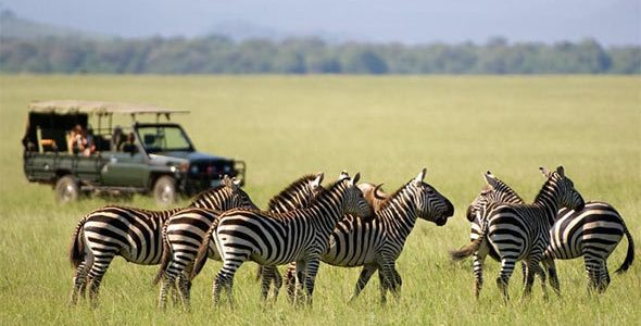 safaris-in-masai-mara