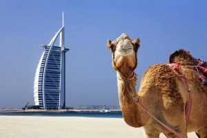 DUBAI Y ABU DHABI – 5 días
