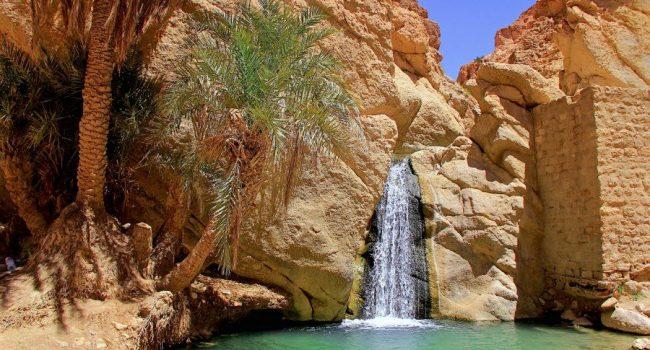 Sahara y Oasis – 8 días